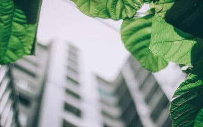 Which Green Building Approach Is For Me?